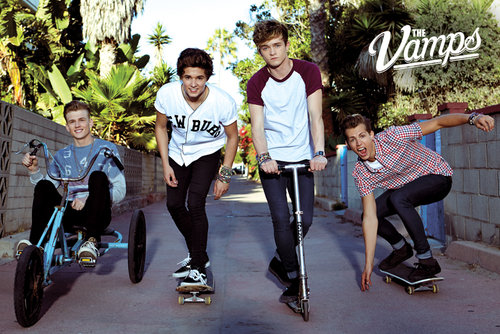 Póster The Vamps Band