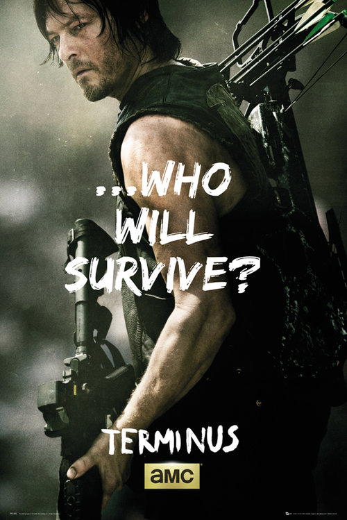 Póster Walking Dead Daryl Survive