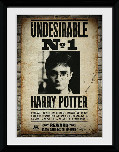 Poster Harry Potter 116043