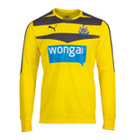 Camiseta Newcastle United 2015-2016 Home (Amarelo)