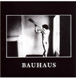Vinil Bauhaus - In The Flat Field