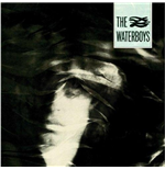 Vinil Waterboys (The) - The Waterboys
