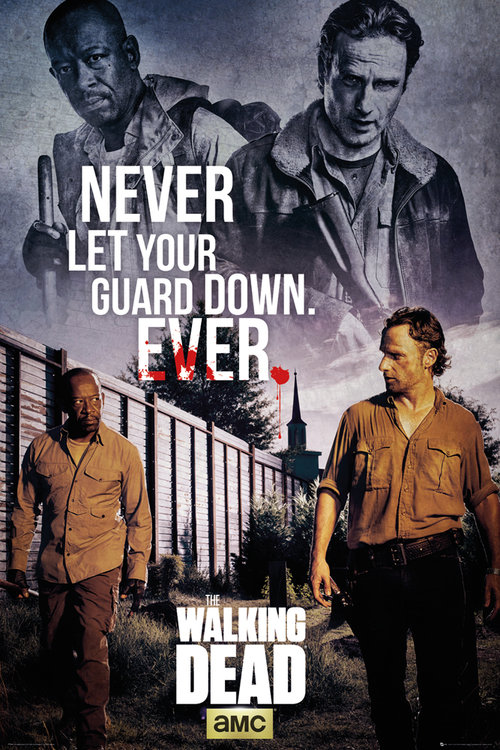 Poster The Walking Dead 177457