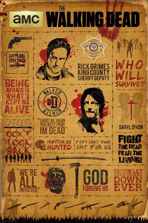 Póster The Walking Dead Infographic