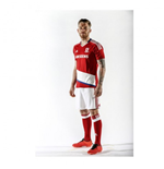 Camiseta Middlesbrough 2016-2017 Home