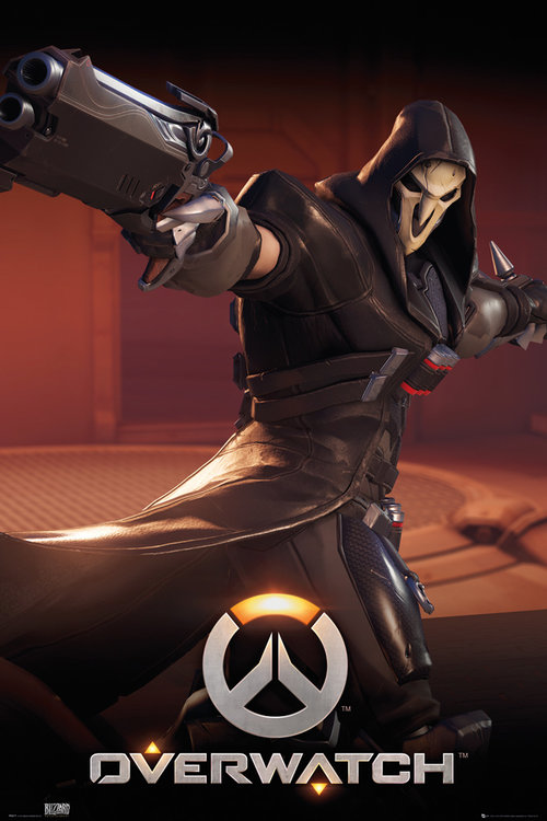 Poster Overwatch 223518