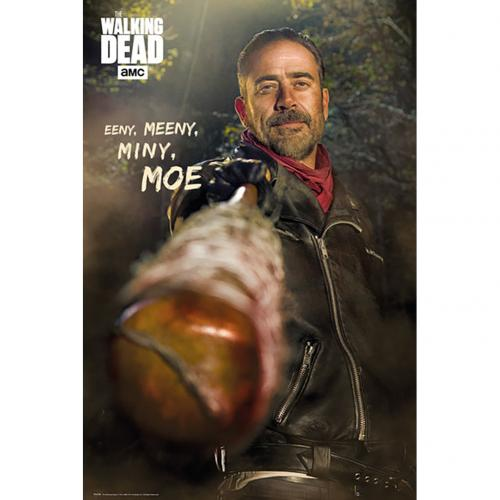 Poster The Walking Dead 225255