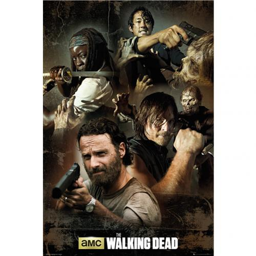 Poster The Walking Dead 225257