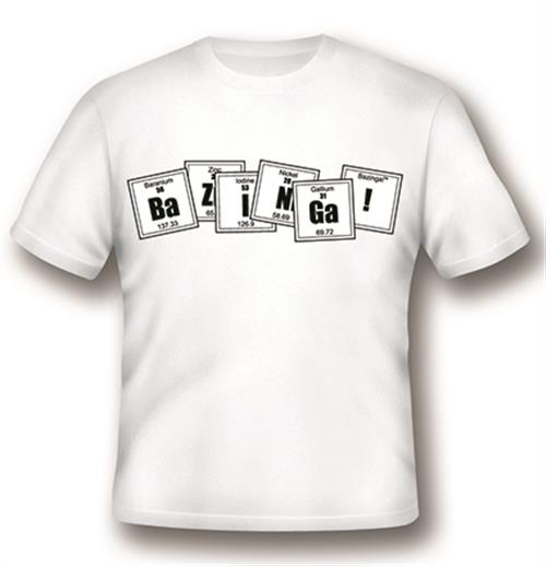 Camiseta Big Bang Theory 235976