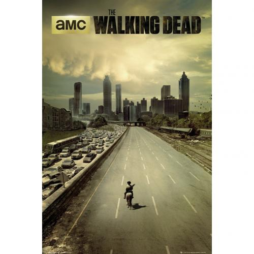 Póster The Walking Dead - City