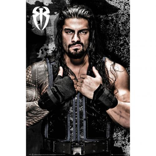 Poster WWE 240493