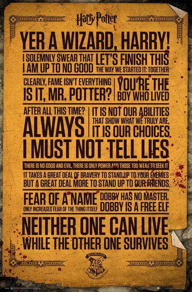 Poster Harry Potter 248372