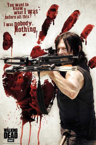 Poster The Walking Dead 248585