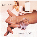 Vinil Sonic Youth - A Thousand Leaves (2 Lp)