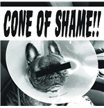"Vinil Faith No More - Cone Of Shame Red (7"")"