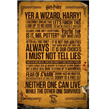 Póster Harry Potter