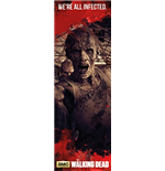 Poster The Walking Dead 254928
