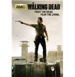 Poster The Walking Dead 254929