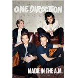 Poster One Direction 259963