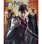 Poster Harry Potter 261086