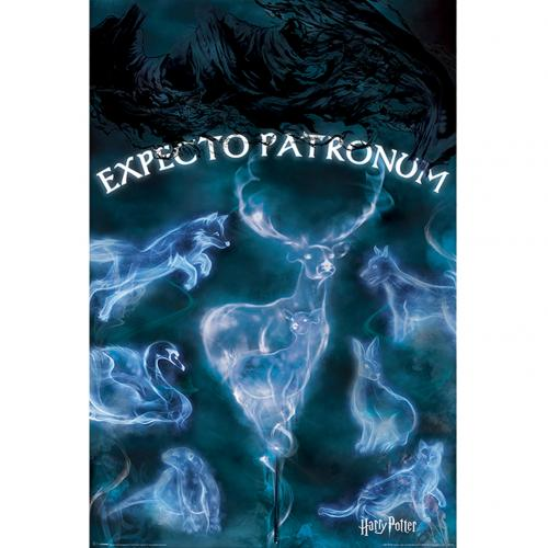 Poster Harry Potter 263910
