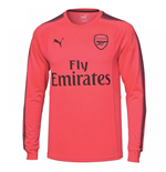 Camiseta Goleiro 2017/18 Arsenal 2017-2018 Away