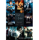 Póster Harry Potter - Collection - 61x91,5 Cm
