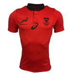 Camiseta África do Sul Rugby 2017-2018