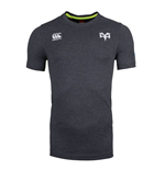 Camiseta Ospreys 2017-2018