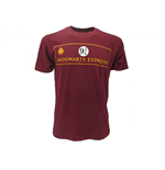 Camiseta Harry Potter 284477