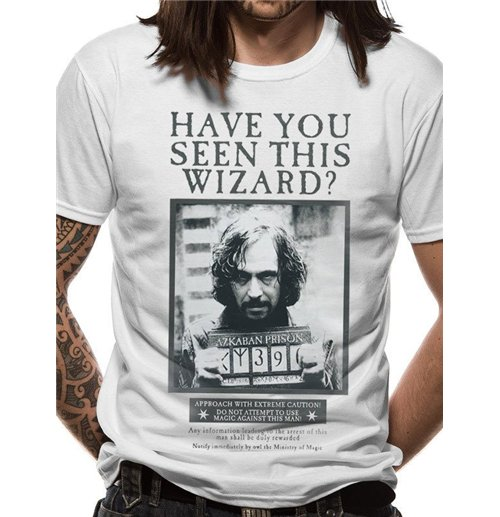 Camiseta Harry Potter 285344