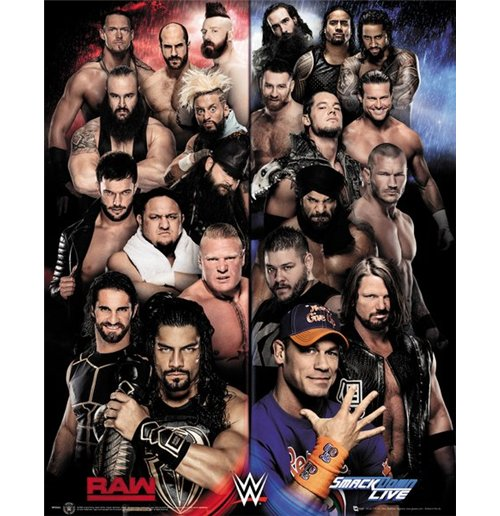 Poster WWE 289506