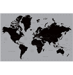 Poster World map 290564