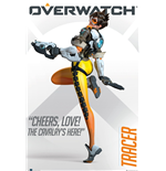 Poster Overwatch 293849