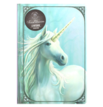 Caderno Anne Stokes 298533