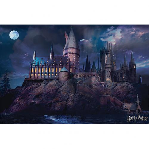 Poster Harry Potter 308766