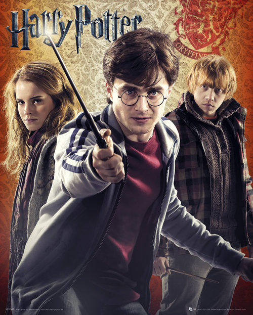 Poster Harry Potter 55638