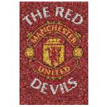 Poster Manchester United FC 59292